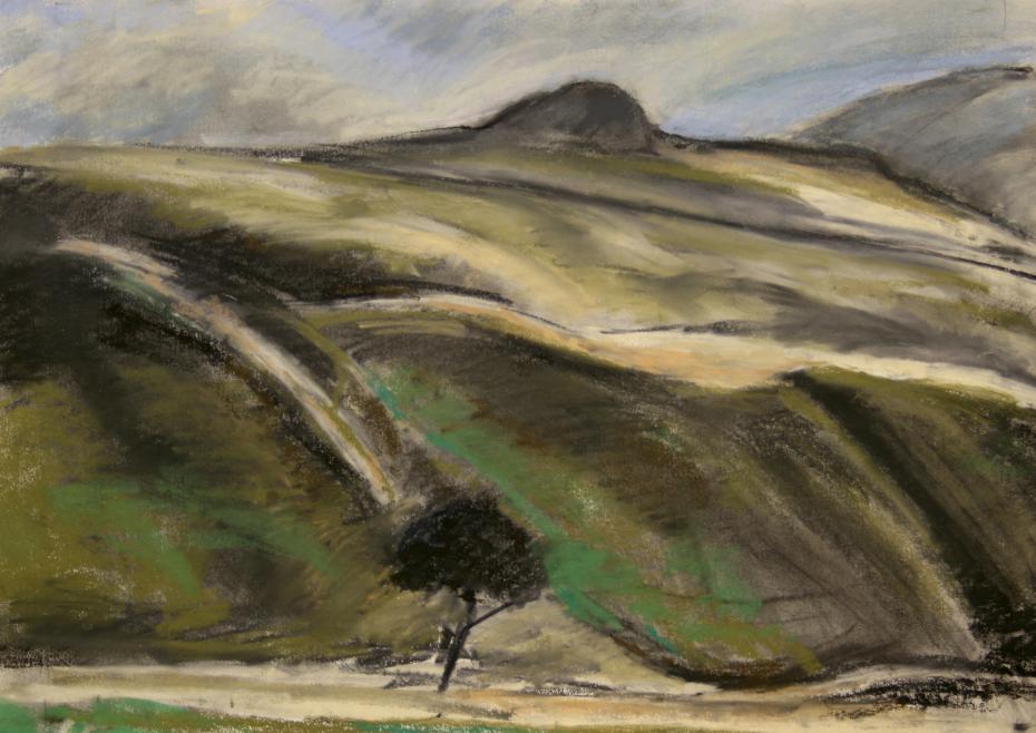 Harthope Valley Cheviot Hills